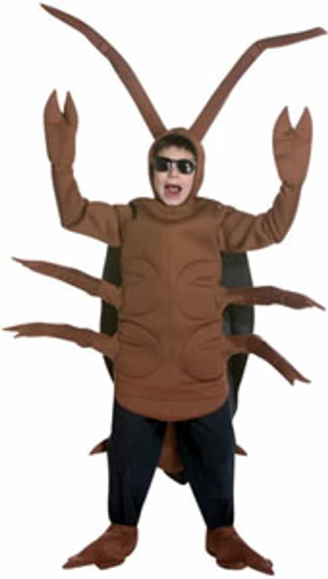 Cockroach is listed (or ranked) 4 on the list The Best Halloween Costumes For Boys | Costumes Ideas