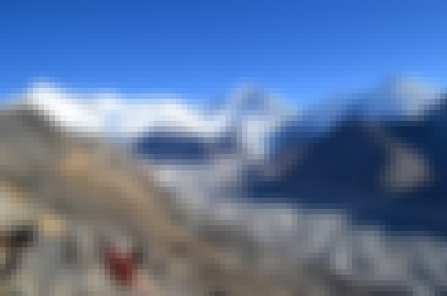 Claude Kogan is listed (or ranked) 2 on the list Mountain Climbing Accidents: Deaths On Cho Oyu