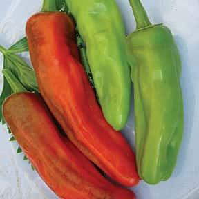 Peperoncini or Friggitello Peppers