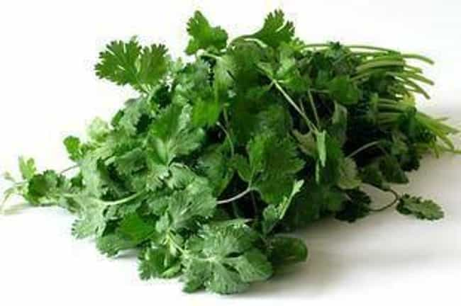Fresh Cilantro is listed (or ranked) 1 on the list Chipotle Secret Menu Items