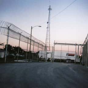 Federal Correctional Instituti is listed (or ranked) 8 on the list All Federal Prisons in Florida