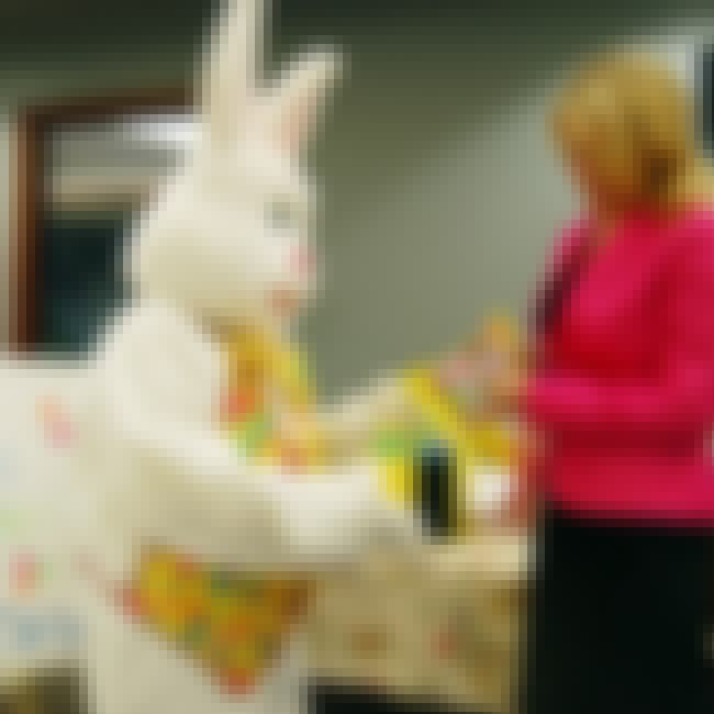 Mall Easter Bunny Doesn't Get ... is listed (or ranked) 7 on the list The 12 Craziest Bunny Costume Arrests