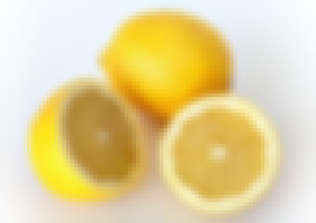 Lemon Party is listed (or ranked) 9 on the list 13 Things You Should NEVER Google