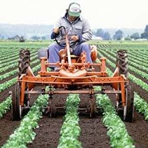 Farmer/Rancher is listed (or ranked) 4 on the list The Most Dangerous Jobs in America