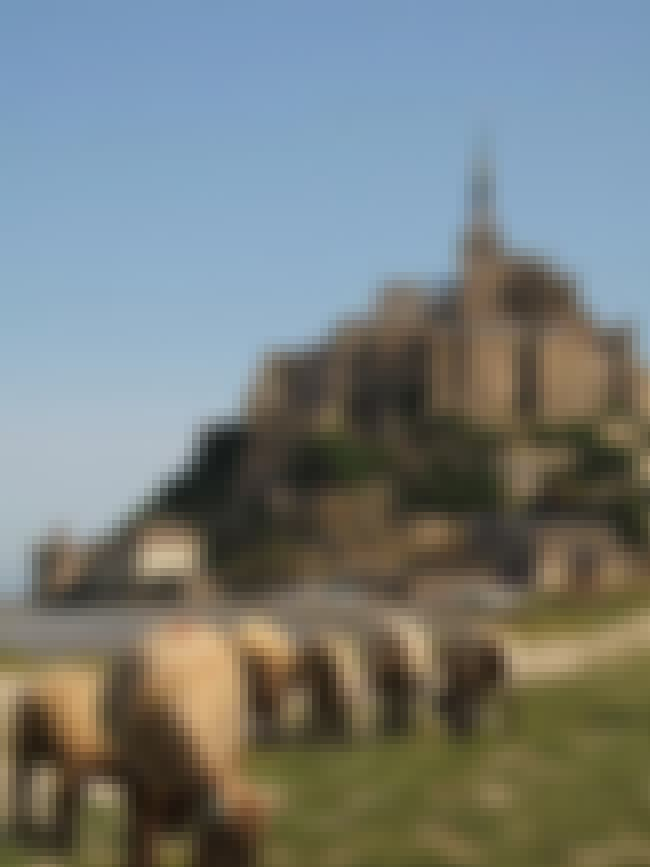 Le Mont Saint-Michel is listed (or ranked) 2 on the list 20 Greatest Works of Architecture Throughout History
