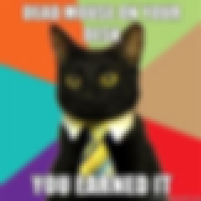 Business Cat on Rewards is listed (or ranked) 2 on the list The Absolute Best of the Business Cat Meme