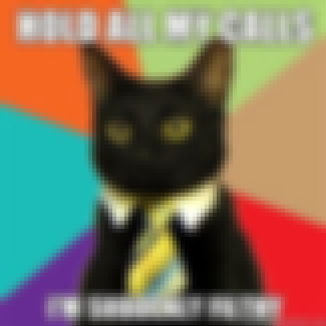 Business Cat on Privacy is listed (or ranked) 15 on the list The Absolute Best of the Business Cat Meme