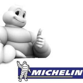 Michelin North America is listed (or ranked) 9 on the list Companies Headquartered in South Carolina