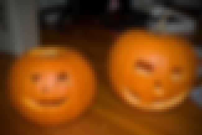 Carved Halloween Pumpkins is listed (or ranked) 1 on the list Halloween Decoration Ideas
