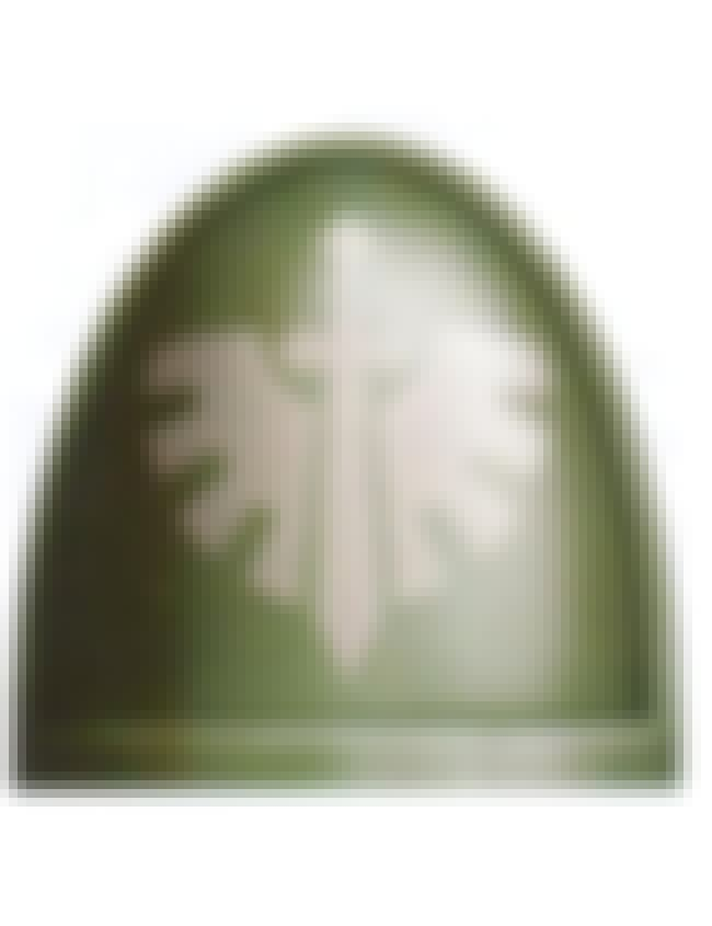 Dark Angels is listed (or ranked) 6 on the list The Best Warhammer 40k Space Marine Chapters