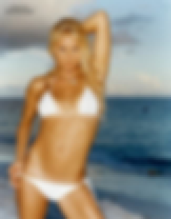 Anna Kournikova Should Be Wary... is listed (or ranked) 14 on the list The 29 Hottest Pictures of Anna Kournikova