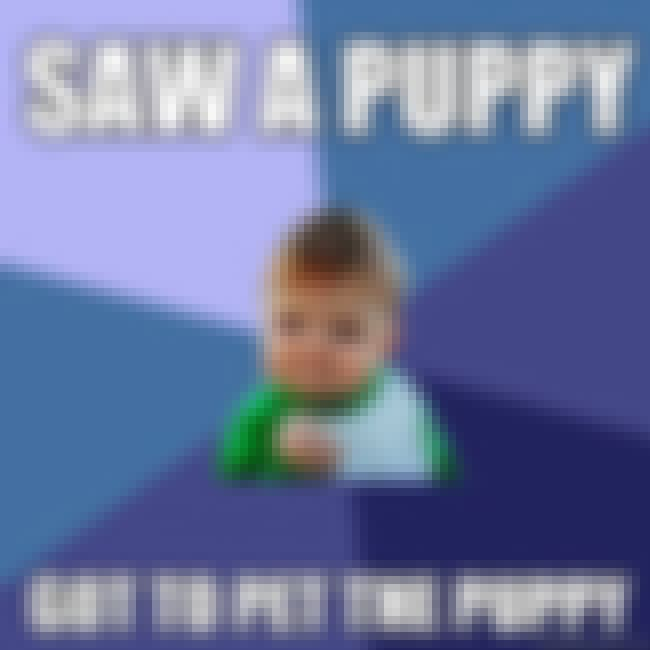 Success Kid Likes Puppies is listed (or ranked) 3 on the list The Very Best of the Success Kid Meme