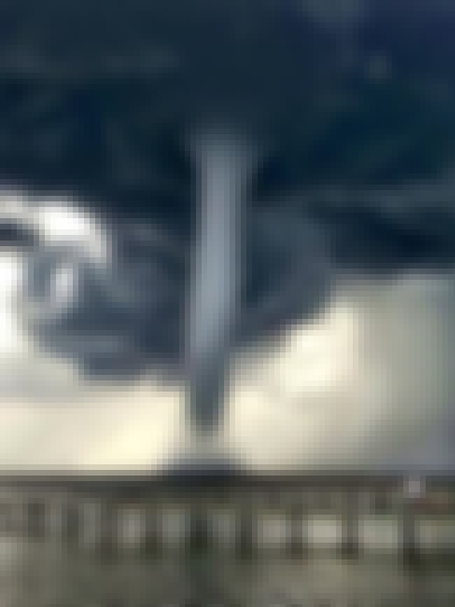 Water Spout is listed (or ranked) 2 on the list 11 Amazing & Rare Natural Phenomena