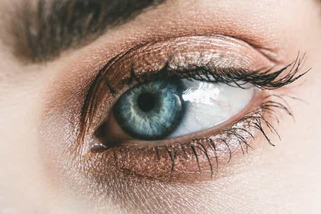Brown is listed (or ranked) 2 on the list The Best Eyeshadow for Blue Eyes