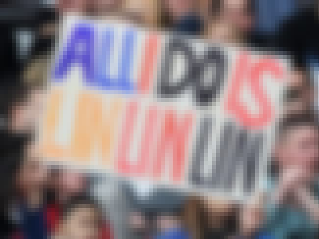All I Do is Lin Lin Lin is listed (or ranked) 5 on the list The Most Ridiculous Jeremy Lin Fan Signs