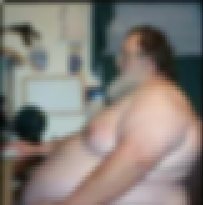 The Fat Man at the Computer is listed (or ranked) 3 on the list The Most Epic Fat Guys In Internet History