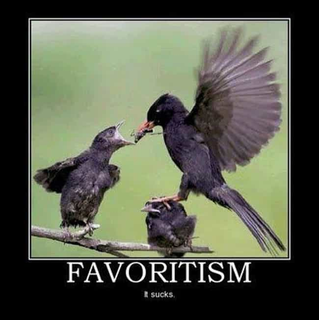 Favoritism is listed (or ranked) 2 on the list The 36 Funniest Demotivational Posters