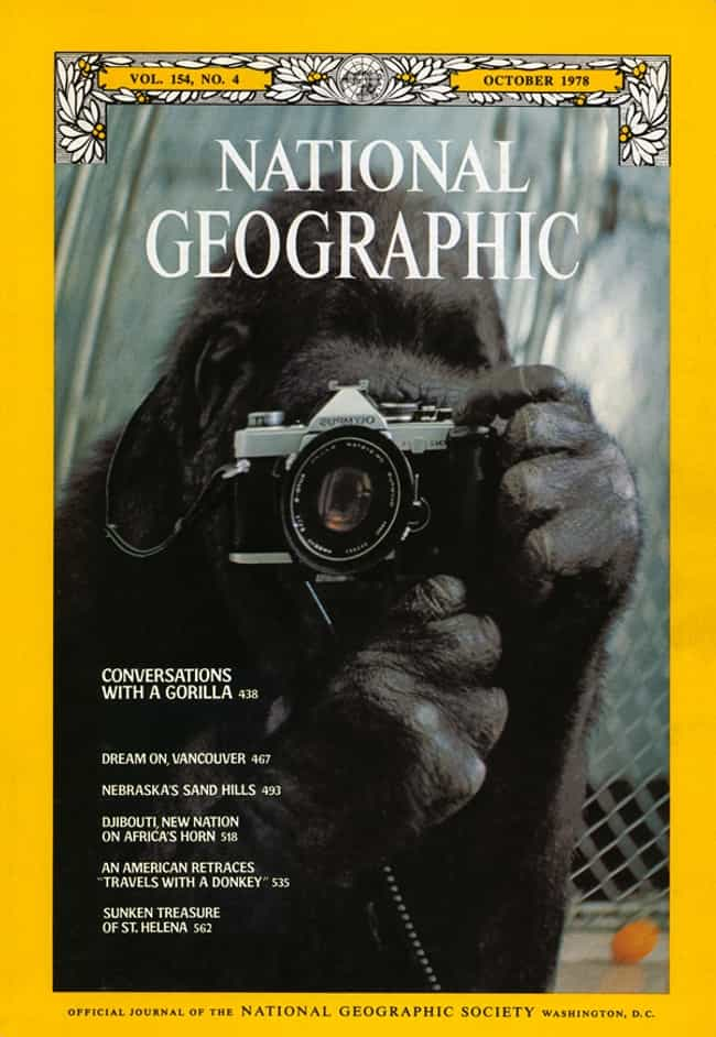 National Geographic - October ... is listed (or ranked) 2 on the list The Best National Geographic Covers