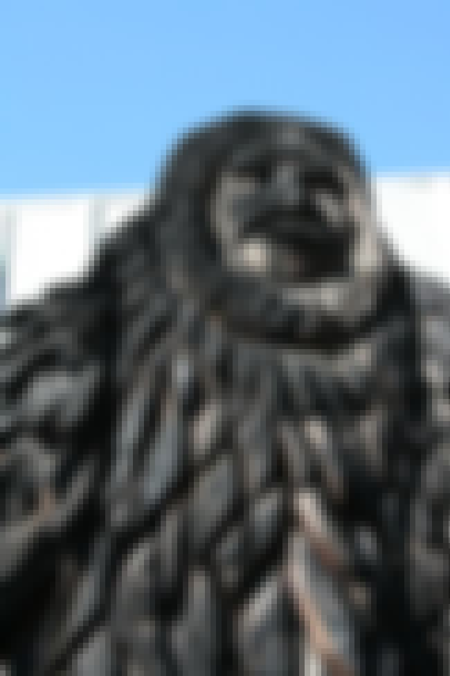 Bigfoot is listed (or ranked) 1 on the list These Are All The Bigfoots Around The World