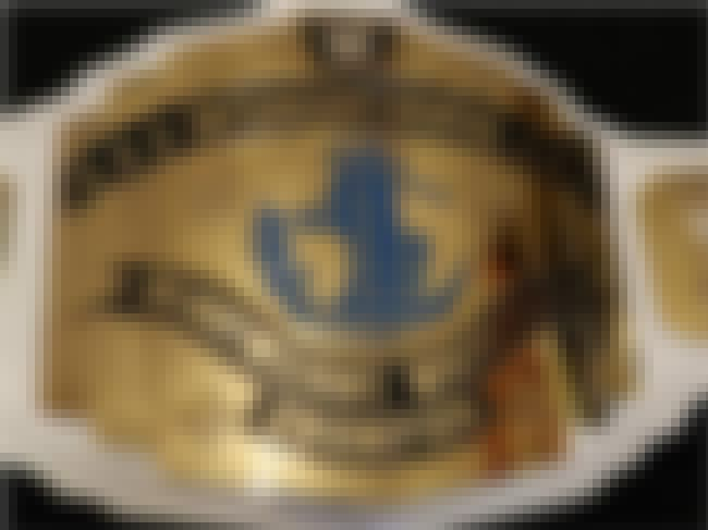 White WWE Intercontinental Tit... is listed (or ranked) 3 on the list The Coolest Championship Belts