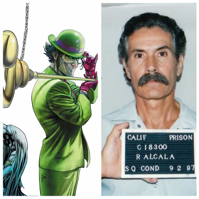 Batman Villain: The Ridd... is listed (or ranked) 4 on the list The Top 5 Real-Life Versions of Batman Villains