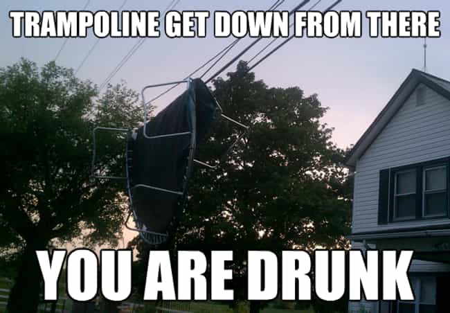 "The Trampoline is listed (or ranked) 4 on the list The Very Best of the ""You Are Drunk"" Meme"