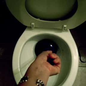 Unclogging the Toilet is listed (or ranked) 1 on the list The Tasks You Loathe The Most