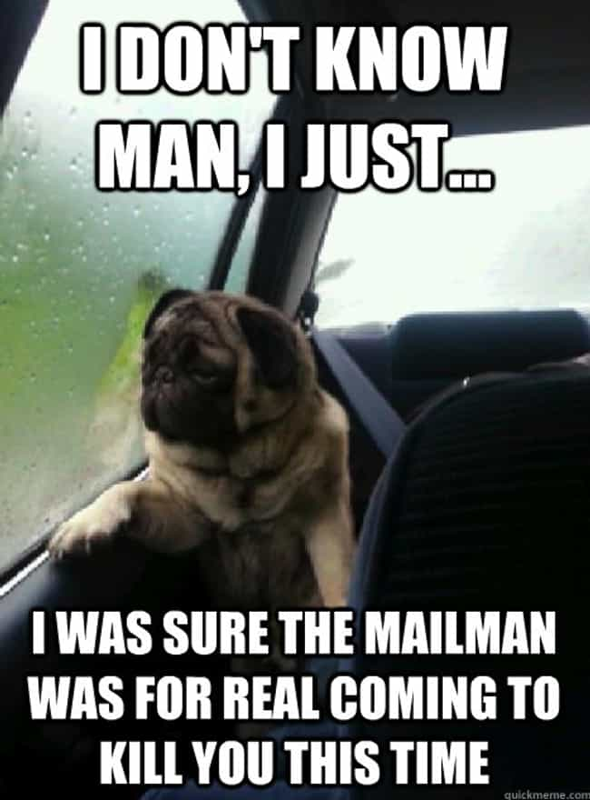 On Guard is listed (or ranked) 3 on the list The Very Best of the Introspective Pug Meme