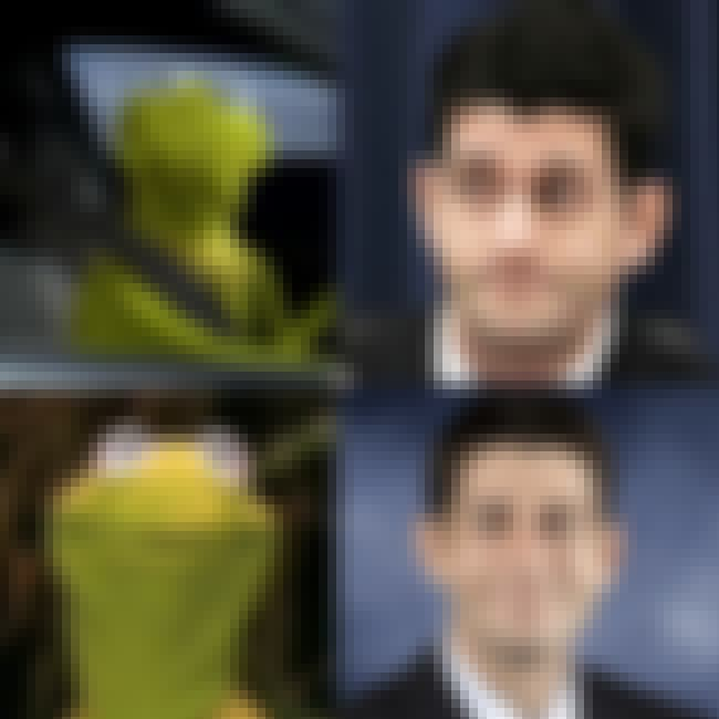 Paul Ryan Makes His Kermit the... is listed (or ranked) 3 on the list The Official 2012 Vice Presidential Debate Drinking Game