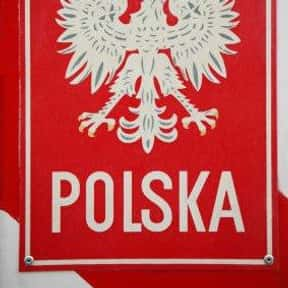 Polish Language is listed (or ranked) 22 on the list The Best Language to Learn