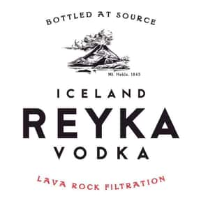 Reyka is listed (or ranked) 7 on the list The Best Vodka Brands