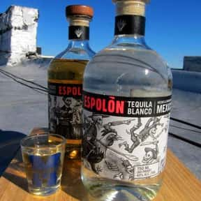 Espolon is listed (or ranked) 13 on the list Tequila Test