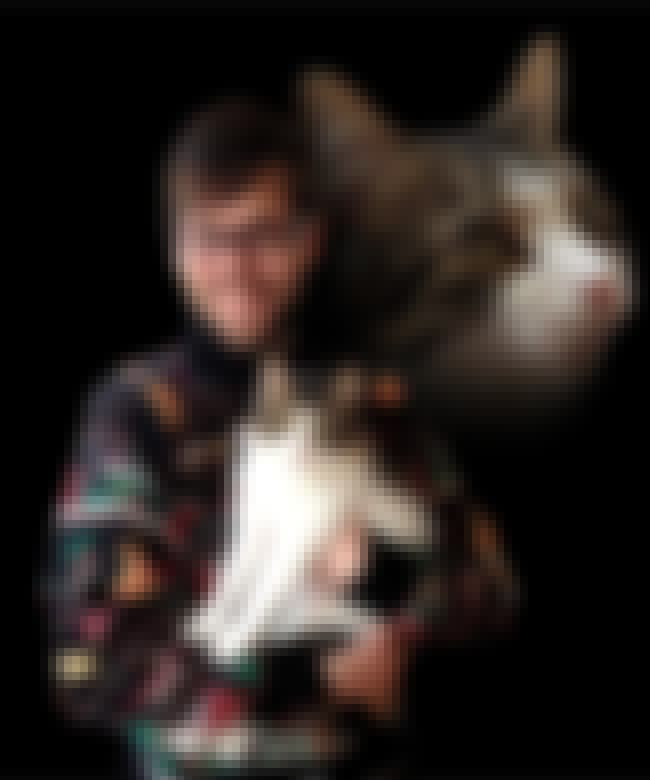 Ugly Christmas Sweater Portrai... is listed (or ranked) 2 on the list The Absolute Worst Pictures of Men Holding Cats