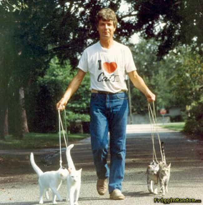 Just Walking the Cats is listed (or ranked) 4 on the list The Absolute Worst Pictures of Men Holding Cats