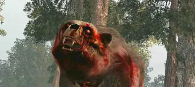 Bears is listed (or ranked) 2 on the list Zombie Apocalypse: Animals That Would Make Scary Zombies...
