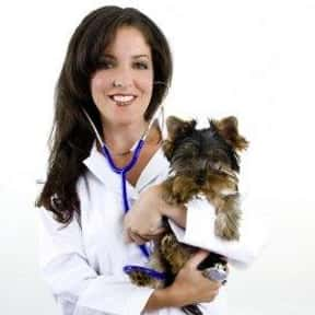 Veterinarian is listed (or ranked) 13 on the list The Top Careers for the Future