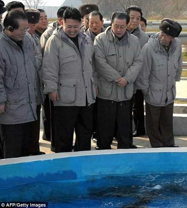 Fish is listed (or ranked) 1 on the list The 51 Best Pictures of Kim Jong-Un Looking at Things