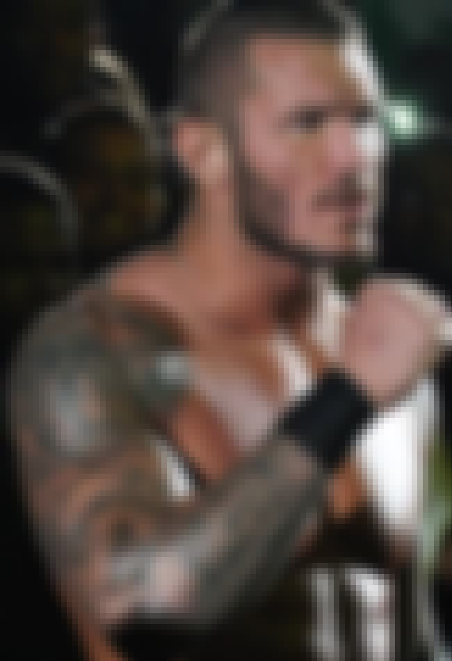 Skulls is listed (or ranked) 1 on the list Randy Orton Tattoos