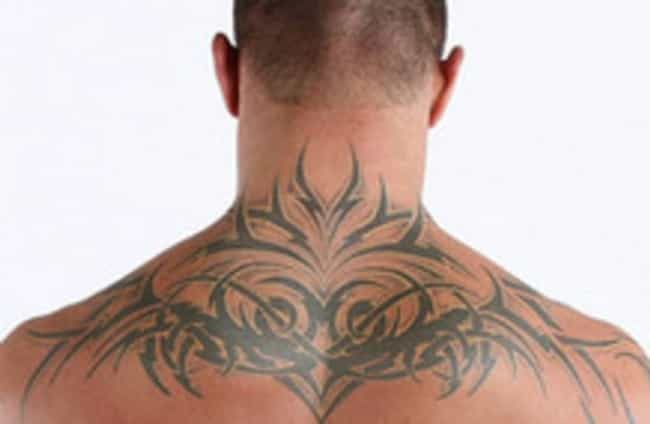 Tribal Sign Tattoos is listed (or ranked) 2 on the list Randy Orton Tattoos
