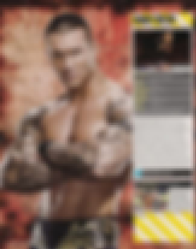 Wings Tattoo is listed (or ranked) 3 on the list Randy Orton Tattoos