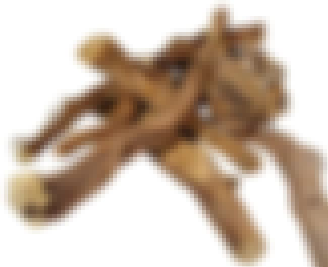 Licorice Root is listed (or ranked) 6 on the list The Top 10 Skin Whitening Ingredients