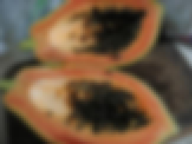 Papaya is listed (or ranked) 7 on the list The Top 10 Skin Whitening Ingredients