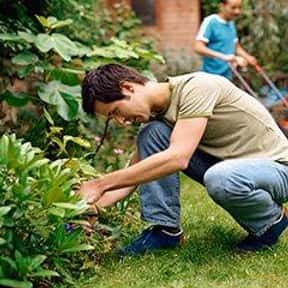 Grounds Maintenance Workers is listed (or ranked) 14 on the list The Most Dangerous Jobs in America