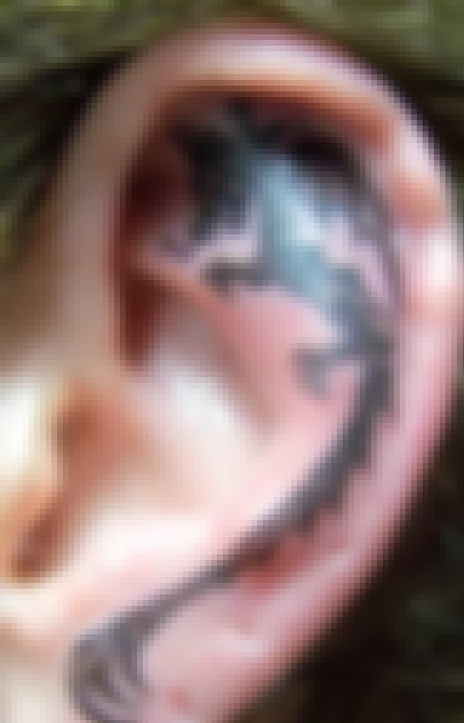 Dragon Ear Tattoos is listed (or ranked) 3 on the list Ear Tattoos And Designs