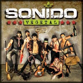 Sonido Vegetal is listed (or ranked) 24 on the list The Best Gypsy Punk Bands