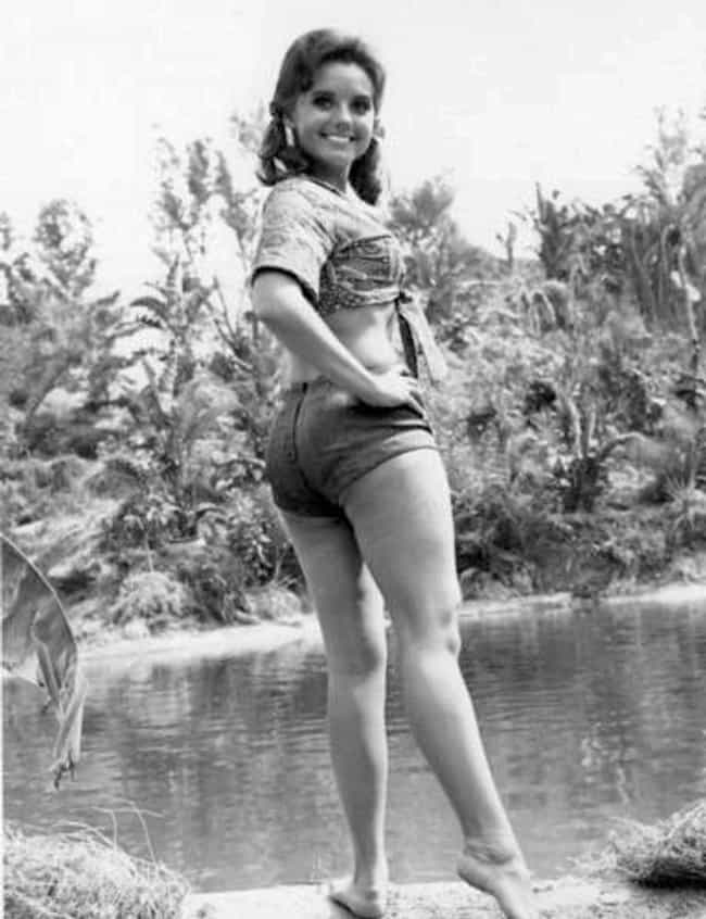 Hottest Dawn Wells Photos