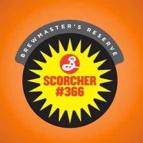 Brooklyn Scorcher #366