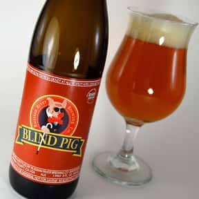 Russian River Blind Pig IPA is listed (or ranked) 13 on the list The Best India Pale Ales
