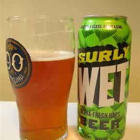 Surly Wet IPA is listed (or ranked) 23 on the list The Best India Pale Ales