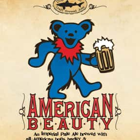 Dogfish Head American Beauty is listed (or ranked) 14 on the list The Best Dogfish Head Beers